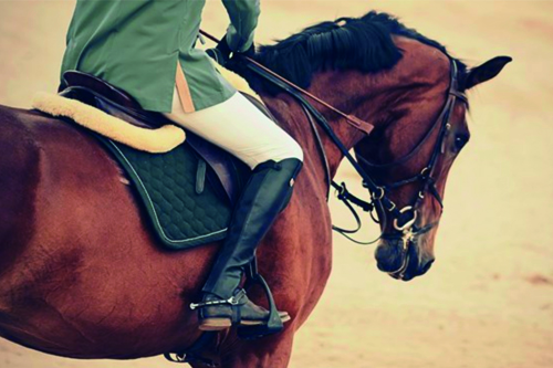 At Yarışları Yolsuzluk