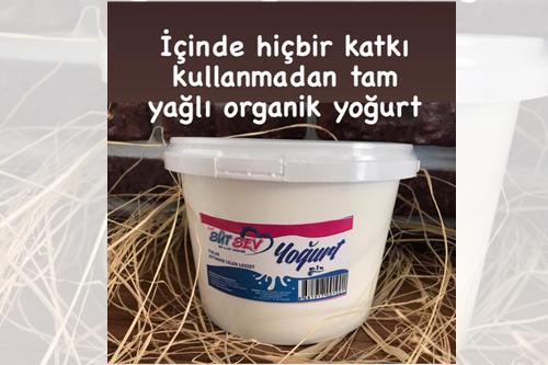 Sütsev Yoğurt ve Sütsev Ürünleri